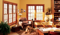 Double hung windows by Anderson