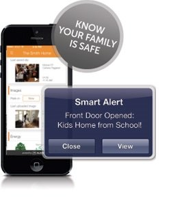 Protection 1 Security - Mobile alerts