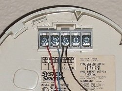 Troubleshooting Smoke Alarm Wiring at the Detectors on types of fire detectors, system sensor strobe lights, security beam detectors, system sensor 2424, system sensor co, system sensor 2251, fire alarm beam detectors, system sensor heat detector, system sensor d4120 spec sheet, system sensor horn strobe data sheet, system sensor 6424 beam detector, system sensor speaker strobe, system sensor 2151, system sensor 2wb, system sensor fire alarm products, system sensor mass, system sensor fire alarm horns, system sensor 2451, system sensor fire alarm p241575k, optical fire detectors,